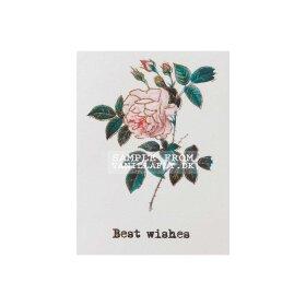 Vanilla Fly - Greeting card
