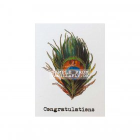 Vanilla Fly - Greeting card, CONGRATULATIONS