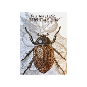 VANILLA FLY - A5 GREETING CARD | BIRTHDAY BUG