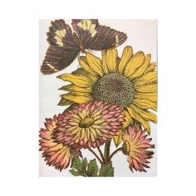 VANILLA FLY - GREETING CARD | SUNFLOWER
